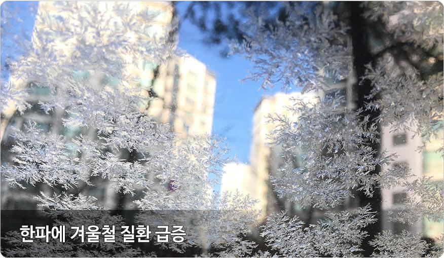 겨울철피부질환