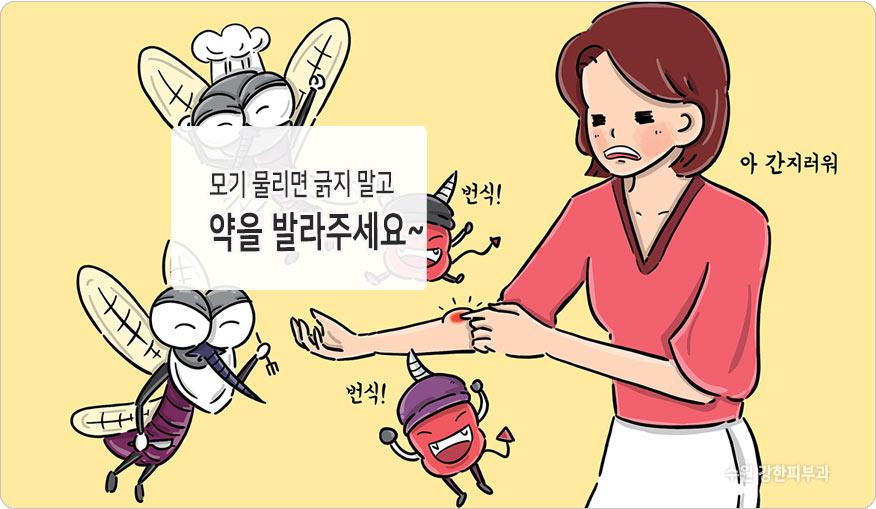 모기물린뒤 치료방법