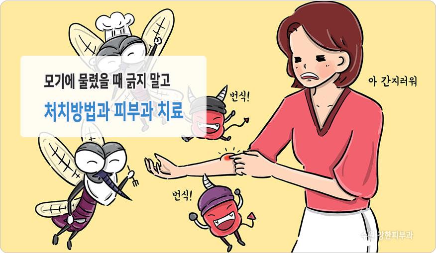 수원 독성홍반 치료
